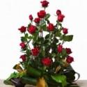 Centro 24 rosas