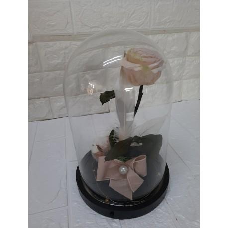Cupula rosa